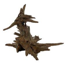 amazonas corbo wurzel nano