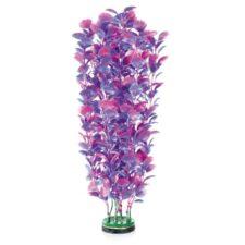 amazonas fantasy plant m blau violett