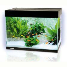 aquarium 78 liter schwarz schweiz