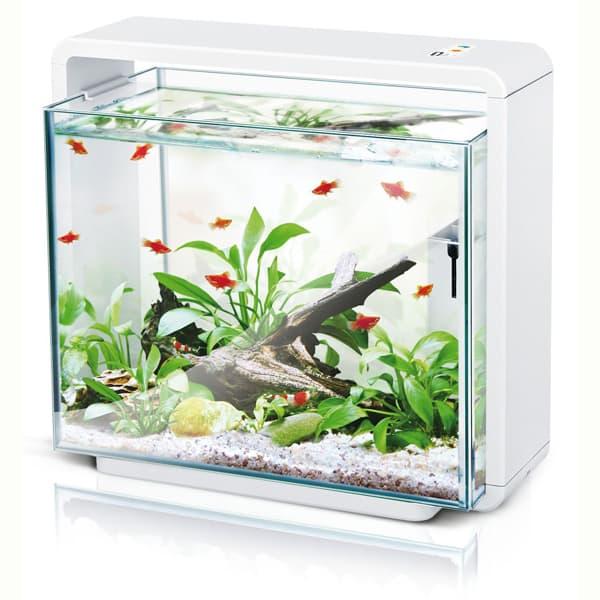 aquarium amazonas led e40 weiss