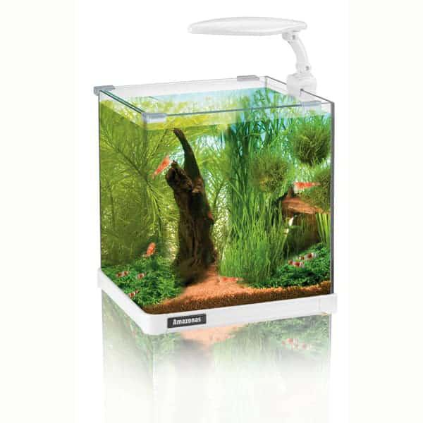 aquarium amazonas nano 10 liter xs 1