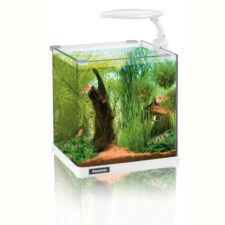 aquarium amazonas nano 10 liter xs