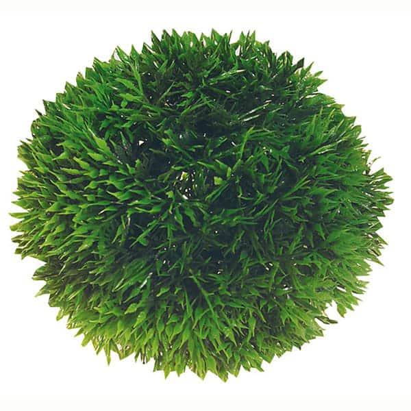 aquarium deko plant ball