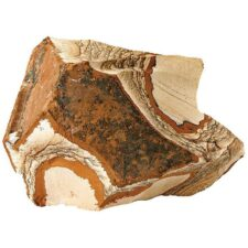 aquarium dekoration picture jasper