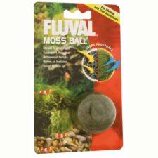 aquarium fluval moos ball wasserklarheit