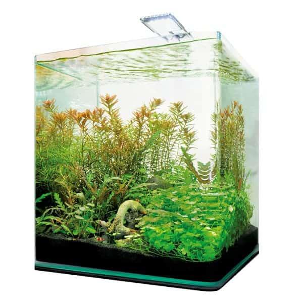 dennerle nano cube complete set aquarium