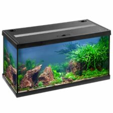 eheim aquastar 54 led aquarium 1
