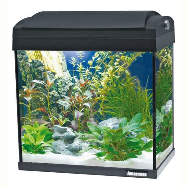 kleines aquarium kaufen 24l