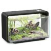 kleines aquarium kaufen biotop schweiz 19A011