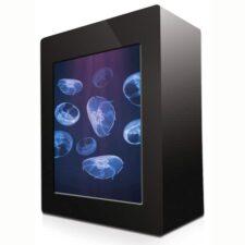 kleines quallen aquarium 10l schweiz 206469