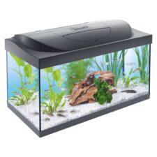 komplett aquarium tetra starter line 54l 1