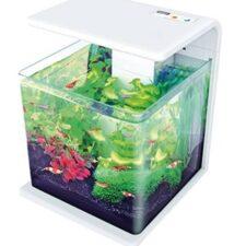 led kleines aquarium weiss buero 206506