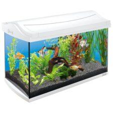 tetra aquaart 60l aquarium set weiss